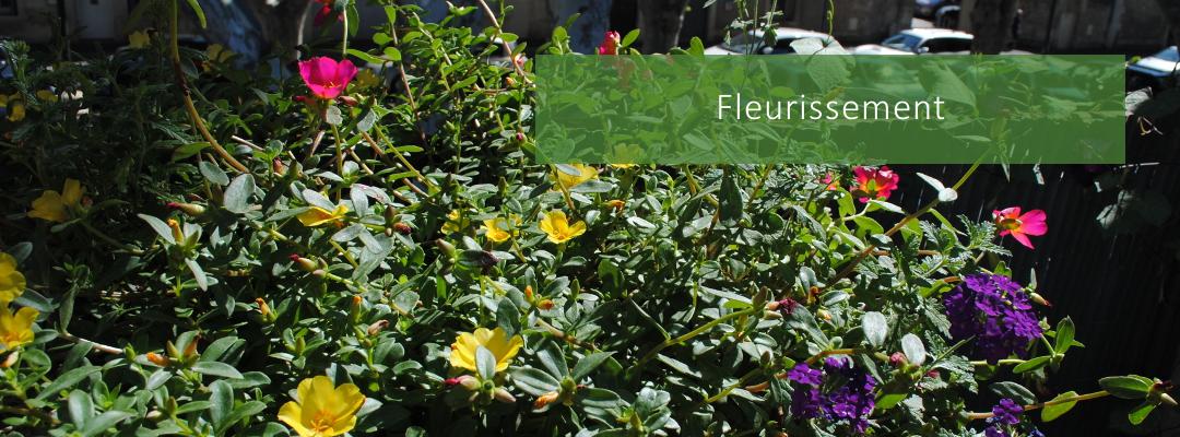 Fleurrissement - Balcons & Cie - Paysagiste à Montpellier-Mauguio